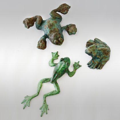 צפרדע קטנה